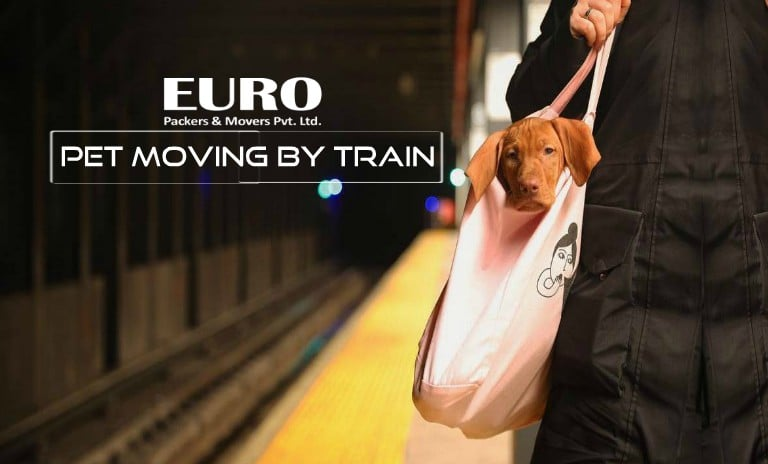 pet moving by train